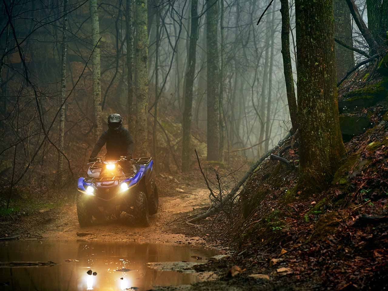 2019 Yamaha Grizzly 700 Gallery 1