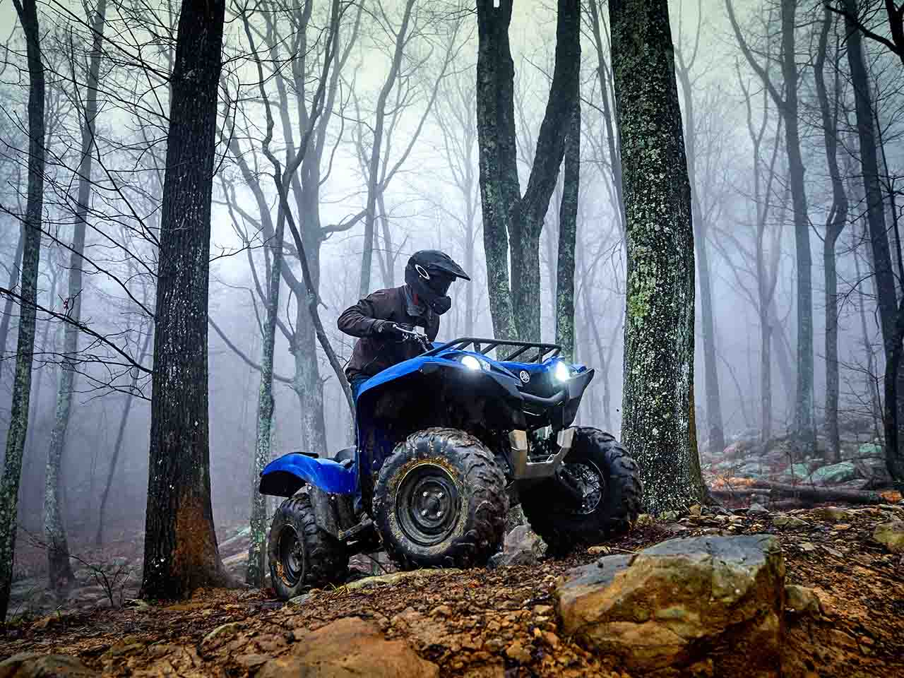2019 Yamaha Grizzly 700 Gallery 2