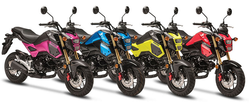 2017 Honda Grom For Sale At Teammoto New Bikes Teammoto